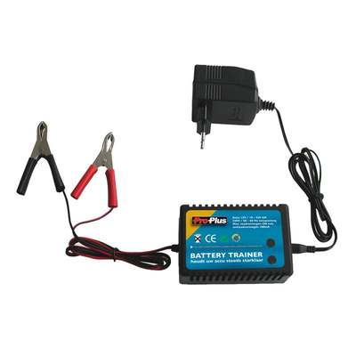 Batterietrainer 12V (10er Pack)